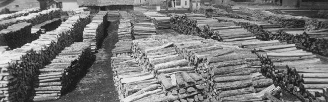 cordwood in jacksonport